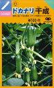【ミニキュウリ】ドカナリ千成 【中原採種場F1交配】(8粒)野菜種[春まき]