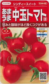【あまうま中玉トマト(赤)】シンディースイート【サカタ交配】(21粒)野菜種[春まき]920010