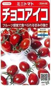 【ミニトマト】チョコアイコ【サカタ交配】 (13粒)春まき野菜種サカタのタネ920110