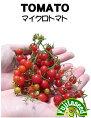 マイクロトマトの種【藤田種子】