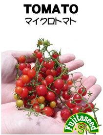 【マイクロトマトの種】【藤田種子】(30粒)野菜種[春まき]
