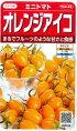オレンジアイコ【サカタのタネ】