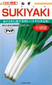 【ネギ】SUKIYAKIスキヤキ 【カネコ種苗】PVP登録品種(3ml)野菜種[春まき][秋まき]