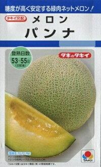 メロン【パンナ】タキイ種苗