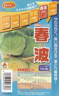 春波(はるなみ)(ペレット種子)タキイ種苗
