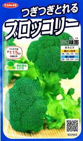 【ブロッコリー】次々とれるブロッコリー 緑笛(りょくてき) 【サカタのタネ】(1ml)野菜種[秋まき][春まき]922503