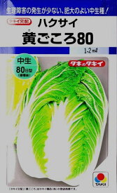 【ハクサイ】黄ごころ80 【タキイ種苗】(1.2ml)野菜種[秋まき]