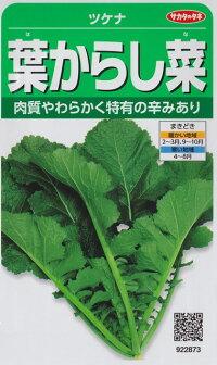 葉からし菜【サカタのタネ】