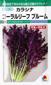 【カラシナ】コーラルリーフプルーム【タキイ種苗】(7ml)野菜種[秋まき]GF
