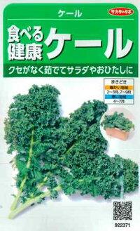 食べる健康ケールの種【サカタのタネ】