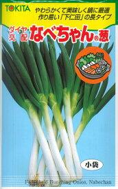 【ネギ】なべちゃん葱【トキタ種苗】(5ml)ダイヤ交配/ねぎの種[春まき][秋まき]