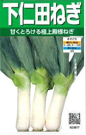【ネギ】下仁田ねぎ 【サカタのタネ】(6ml)野菜種[春まき][秋まき] 923877【RCP】