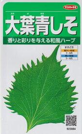 【シソ】大葉青しそ 【サカタのタネ】(5ml)野菜種/青シソ[春まき]923084