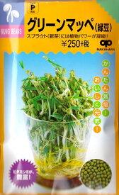 【スプラウト】グリーンマッペ(緑豆)【中原採種場】(60ml)野菜種