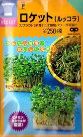 【スプラウトの種】ロケット(ルッコラ)【中原採種場】(35ml)野菜種