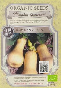 かぼちゃ(バターナッツ)★オーガニックシード(有機種子)2.5g[春まき][秋まき]