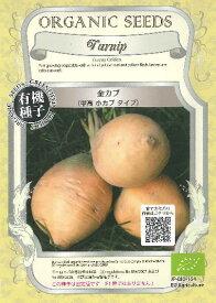 金カブ(甲高小カブタイプ)★オーガニックシード(有機種子)2g(約1300〜1800粒)Turnip Golden[春まき][秋まき]