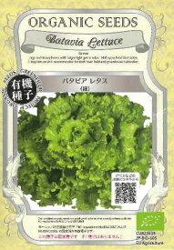 バタビアレタス(緑)★オーガニックシード(有機種子)0.05g[春まき][秋まき]