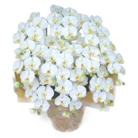 造花 光触媒 胡蝶蘭 大輪 白 M 10本立ち 人工造花