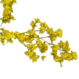 【花なし株】 オンシジューム トゥインクル 'イエローデイズ' Onc.Twinkle 'Yellow Days' 交配種 芳香あり 3号鉢 25cm 開花サイズ(BS)