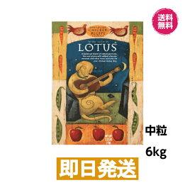 ロータス アダルトチキンレシピ 中粒 6kg ドッグフード LOTUS