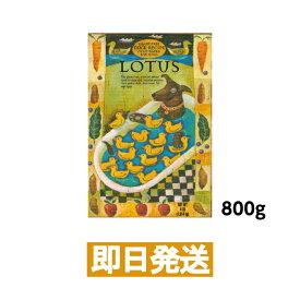 【LOTUS】ロータス グレインフリー ダックレシピ 成犬用 800g ドッグフード