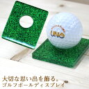 【送料無料キャンペーン中!】ゴルフボールディスプレイプレート 1球 (グリーン:芝) 《オリジナル ゴルフボール ホ…
