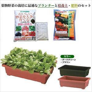 しゅうかく菜560型葉物野菜野菜の培養土・肥料スターターセット ガーデニング 【家庭菜園】