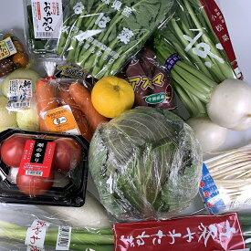 【大田市場直送】おまかせ野菜セット 野菜15品詰め合わせ 【送料無料】おすすめ野菜 商品を追加しても送料無料のまま 市場を通しているので安心、安全 入荷したての新鮮な野菜をお届け 是非お試し下さい