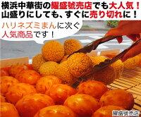 【冷凍商品】芝麻球(ごまだんご・ごま団子)20個入(800g)耀盛號(ようせいごう・ヨウセイゴウ)