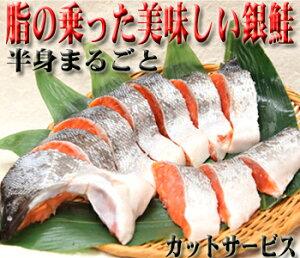 【青森八戸加工】脂の乗りが最高!激安銀鮭!只今1サイズUPの1.15kg前後での発送になります