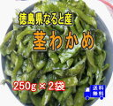 【徳島県なると産】新物入荷塩蔵茎わかめ 250g×2パック【要冷蔵】【送料無料】メール便でお送りします。内容量、価格を変更しました。