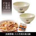 吉野家 夫婦茶碗+ミニ牛丼の具6袋セット 冷凍食品