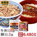 【送料無料】吉野家 牛丼の具135g×6袋&うなぎ144g×3袋セット 冷凍食品