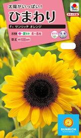 花種 NL300 ひまわり F1 サンリッチ オレンジ 小袋 [FHM512]【花の種】【タキイのタネ】【ガーデニング】