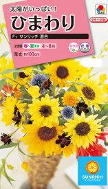 花種 NL300 ひまわり F1 サンリッチ 混合 小袋 [FHM519]【花の種】【タキイのタネ】【ガーデニング】