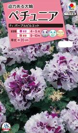 花種 NL300 ペチュニア F1 パープルピルエット 小袋 [FPT226]【花の種】【タキイのタネ】【ガーデニング】