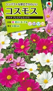 花種 NL200 コスモス ソナタ プレミアムミックス 小袋 [FCS380]【花の種】【タキイのタネ】【ガーデニング】