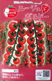 マロウの地中海トマト ルージュドボルドー ミニトマト種子 100粒【イタリアトマト】【野菜の種】