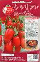 マロウの地中海トマト シシリアンルージュ ミニトマト種子 8粒【イタリアトマト】【野菜の種】