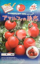 マロウの地中海トマト アマルフィの誘惑 中玉トマト種子 8粒【イタリアトマト】【野菜の種】