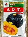 えびす 500粒 かぼちゃ種子 【南瓜の種】【タキイのタネ】【野菜の種】