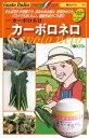 【送料無料】トキタ カーボロネロ コート1000粒 黒キャベツ種子 【野菜種子】