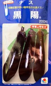 【郵便配送で送料無料】黒陽 2000粒 小袋 長なす種子 【ナス種】【タキイのタネ】【野菜の種】