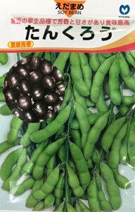 たんくろう 枝豆種子 1L 黒エダマメ 丸種種苗