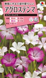 花タネ NL300 アグロステンマ ラブリーミックス 小袋 [FZZ434]【花の種】【タキイのタネ】【ガーデニング】