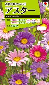 花種 NL200 アスター マーガレット混合 小袋 [FAS610]【花の種】【タキイのタネ】【送料110円〜】【ガーデニング】