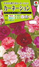 花種 NL200 カーネーション アンファン ド ニース混合 小袋 [FCN149]【花の種】【タキイのタネ】【ガーデニング】