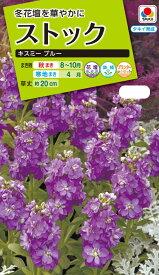 花種 NL200 ストック キスミー ブルー 小袋 [FST714]【花の種】【タキイのタネ】【送料110円〜】【ガーデニング】