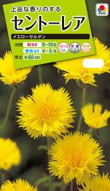 花種 NL200 セントーレア イエローサルタン 小袋 [FSS121]【花の種】【タキイのタネ】【送料110円〜】【ガーデニング】